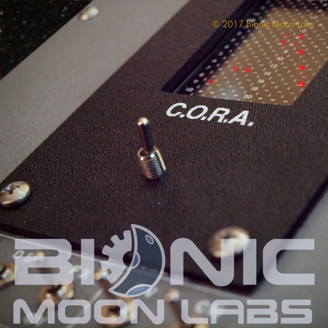 bml-cora-detail4